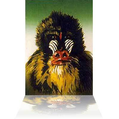 Ronnie Wood Ronnie Wood Limited Edition Print Mandrill