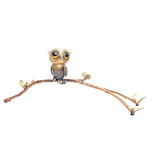 Carlos and Albert Carlos and Albert Baby Owl on a Branch