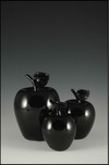 Donald Carlson Donald Carlson Shiny Black Apples