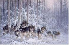 Larry Fanning Larry Fanning Crystal Forest - Gray Wolves (SN)