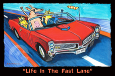 Matt Rinard Matt Rinard Life in the Fast Lane
