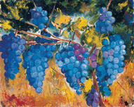 William Kelley William Kelley L'Uve (Grapes)
