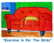Matt Rinard Matt Rinard Exercise Is For The Birds