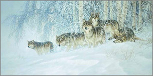 Larry Fanning Larry Fanning Winter's Lace - Gray Wolves (SN)