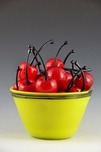 Donald Carlson Donald Carlson 25 Cherries with Yellow Bowl