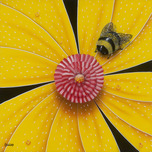 Michael Godard Michael Godard Bee- Colored Flower Yellow (Paper) (AP)