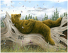 Robert Bissell Limited Edition Giclee on Canvas AM2