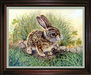 Jacquie Vaux Original Water Color Baby Hare
