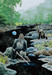 Schim Schimmel Limited Edition Giclee on Paper Eternal Rivers - Gorilla