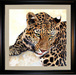 Jacquie Vaux Original Water Color Leopard