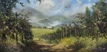 James Coleman Limited Edition Giclee on Canvas Napa Vineyard  30 x 60