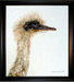 Jacquie Vaux Original Water Color Rhea Chick