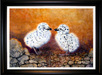 Jacquie Vaux Original Water Color Seagull Chicks