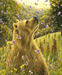 Robert Bissell Limited Edition Giclee on Canvas The Release (Collector Edition)