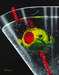 Godard Martini Art Limited Edition Giclee on Canvas Think Inside the Glass