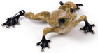 Frogman - Tim Cotterill Bronze Sculpture Toady
