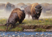 Kyle Sims Limited Edition Giclee on Canvas Yellowstone Face Off