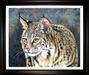 Jacquie Vaux Original Water Color Bobcat Head