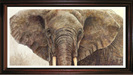 Jacquie Vaux Original Water Color Elephant