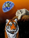 Schim Schimmel Limited Edition Giclee on Paper My Home Too - Tiger