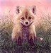 Jacquie Vaux Limited Edition Fine Art Giclee Baby Red Fox