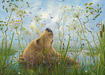 Robert Bissell Limited Edition Giclee on Canvas The Whole World